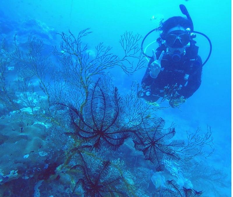Cari Tempat Untuk Liburan Weekend? Destinasi Pulau Matahari Kepulauan Seribu Bisa Jadi Pilihan