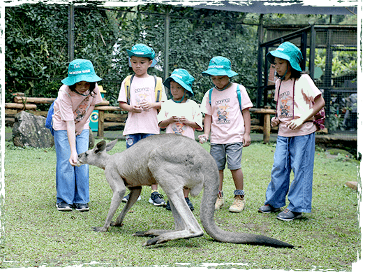 paket edukasi taman safari cisarua