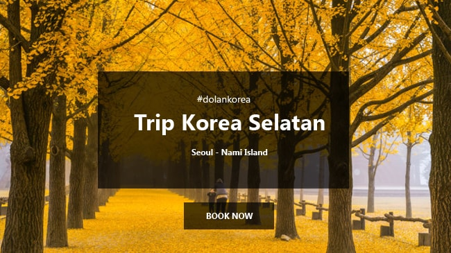 5 Hari Tour Korea Selatan Special Autumn Nami Island